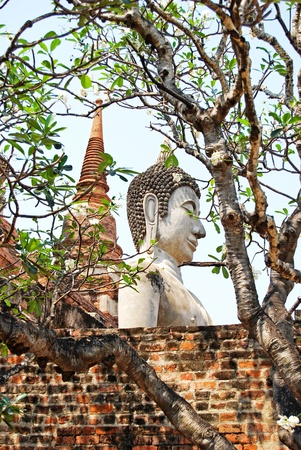 Buddha Status at wat yai chaimongkol temple Ayutthaya Thailand photo