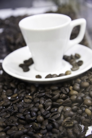 Coffee beans and a cup of coffee photo