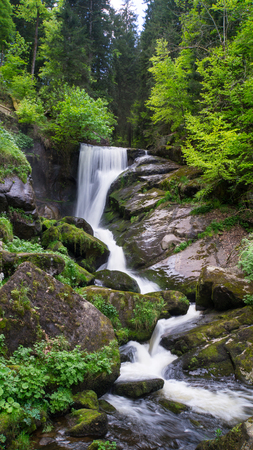 Black Forest - Triberg Waterfall with green leaves