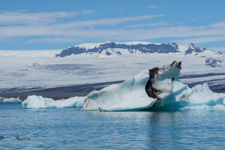 Iceland - Impressive iceberg drifting in glacial lake with glacier in background