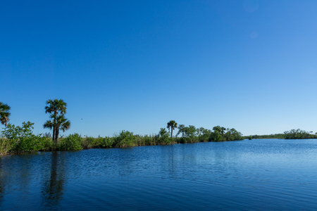 USA, Florida, Reflecting landscape and trees in everglades national park