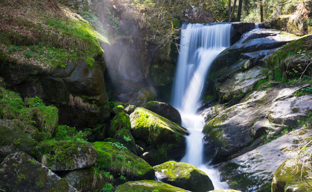 Germany, Green moss covered stones at triberg waterfalls nature landscape