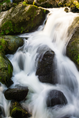 Germany, Moss covered green shining stones in triberg waterfalls park in black forest