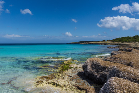Mallorca, Stones algae and sea grass at coast of holiday island perfect for hiking 写真素材