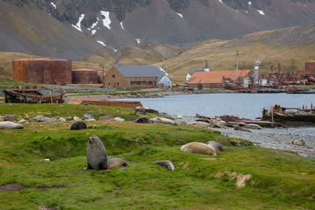 an old fisher village in the mountains of antarctica with old houses 스톡 콘텐츠