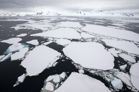 icecaps in the Antarctica with iceberg in the ocean swimming around and melting in the sea 免版税图像
