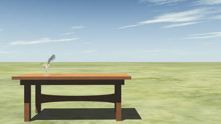 raytracing: Feather on a table