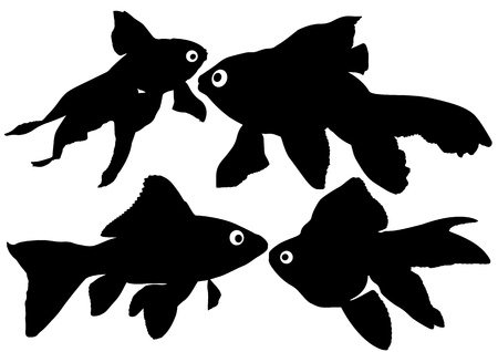 Goldfish silhouettes on white background