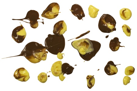 Chocolate and vanilla pudding splats isolated on white Stock Photo - 15736984