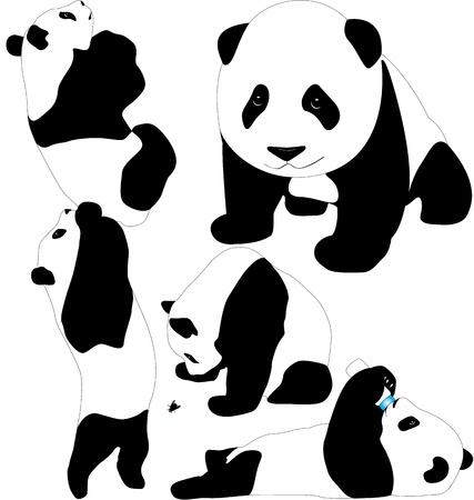 oso panda: Siluetas bebés panda