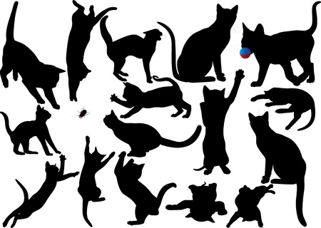 Cat and kitten vector silhouette set  Layered  Fully editable