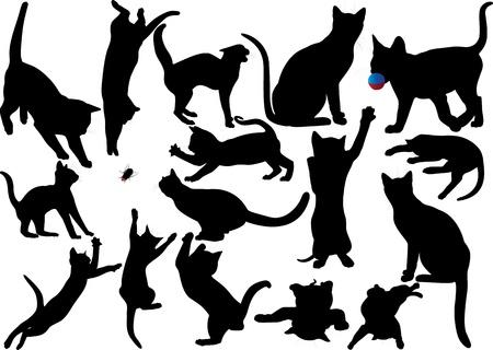 silhouette gatto: Gatto e gattino silhouette vettore set di pi� livelli completamente modificabili