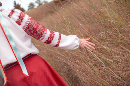 Unmarried (can be distinguished by ribbons) Ukrainian girl dressed in traditional attire stroking grass while promenading in the field 版權商用圖片 - 98130041