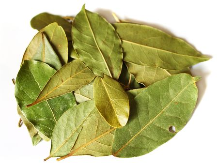 commercial medicine: macro bay leaves spice for cooking isolated on a white background Stock Photo