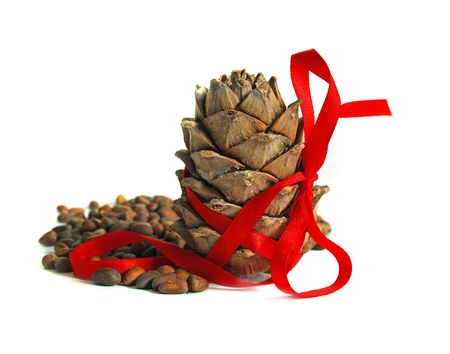 New year still life with nuts, cones and red ribbon isolated on a white background photo