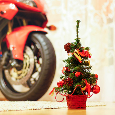 Little Christmas tree. Close up. In the background is a sports bike.