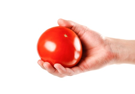 Hand holding a red tomato. Close up. Isolated on white background.