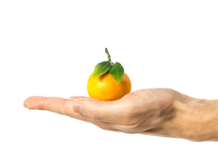 Hand holding a tangerine with green leaves. Close up. Isolated on white background.