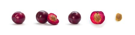 A set of sliced purple plums. Close up. Isolated on a white background. Фото со стока