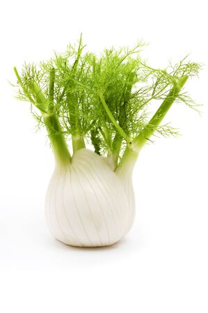 foeniculum vulgare: Florence fennel bulb on a white background Stock Photo
