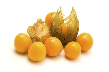papery: Physalis on a white background