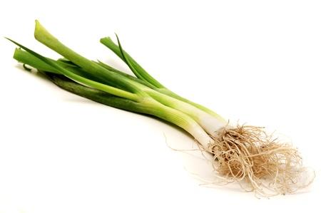 scallion: Welsh onion on a white background