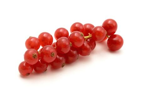 grosella: Grosella roja sobre un fondo blanco