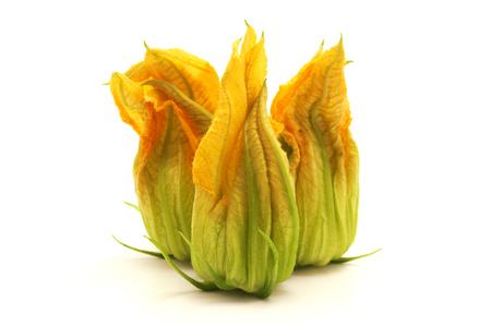 calabacin: Flor de calabacín amarillo sobre fondo blanco Foto de archivo