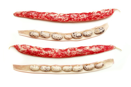 roman beans: Cranberry beans on a white background