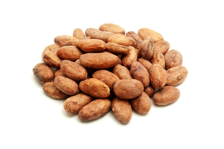 Cocoa beans on a white background photo