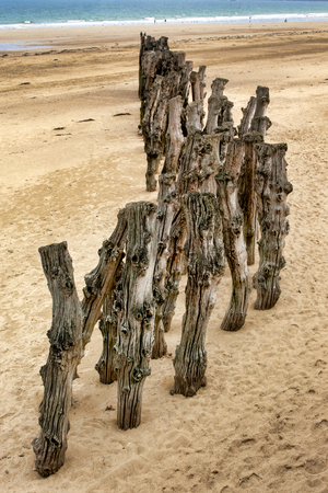 Wooden stakes driven into the sand on the beach at Saint-Malo, Brittany, France Stock Photo