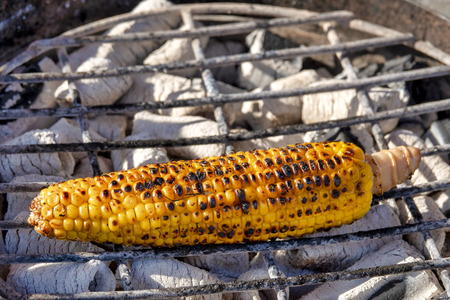 Corn on the cob cooked on hot coals
