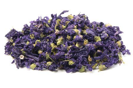 Dried lavender flowers (Lavandula angustifolia) on a white background Standard-Bild