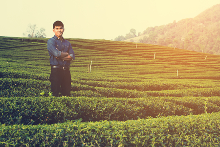 man working on checking farm in his tea garden in the morning