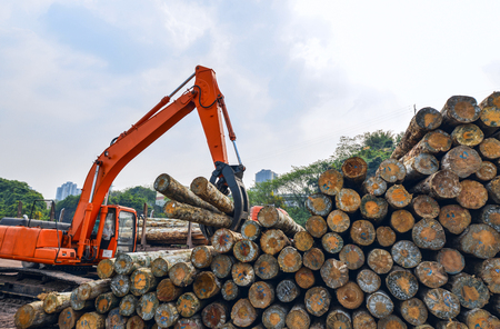 Wood processing factory Banque d'images