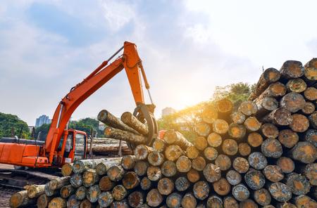 Wood processing factory Reklamní fotografie