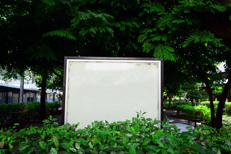 the whiteboard at the park in university among the trees Imagens