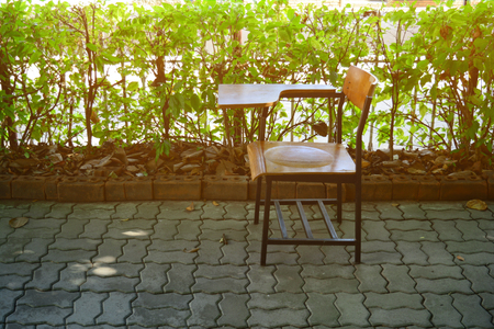 the lecture chair  in the garden with golden light  from the sun in the morning