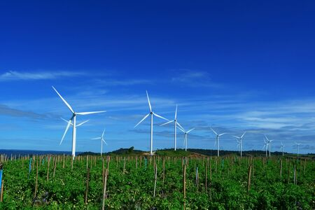 The white electric wind turbine with blue sky and tomatoes garden  at petchaboon, Thailand Фото со стока