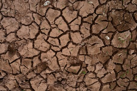 the cracked of  soil in summer from global warming effect and drough