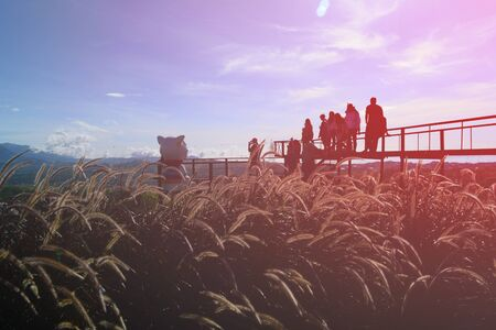 a group of tourist on the bridge at view point with orange  sky ,sunlight and grass flowers on afternoon