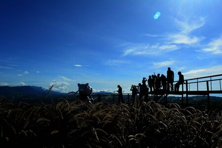 a group of tourist on the bridge at view point with blue  sky  and grass flowers on afternoon Фото со стока