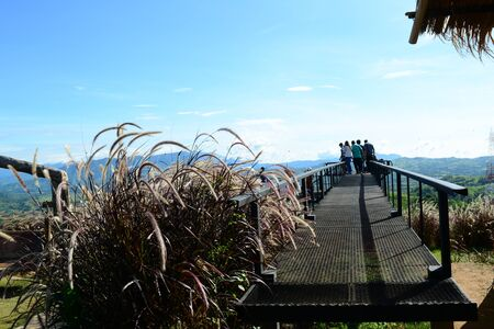 a group of tourist on the metal  bridge at view point with blue  sky  and grass flowers on afternoon Фото со стока