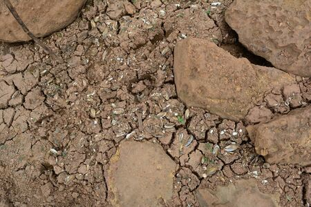 The rocks with cracked soils and shells fraction effect from drough and global warming