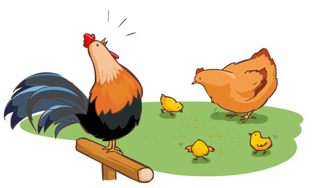 poke: rooster hen and chicks family on backyard vector illustration