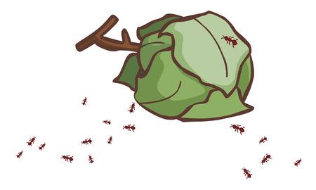 hormiga hoja: deja nidos de hormigas en la ilustración vectorial de tierra Vectores