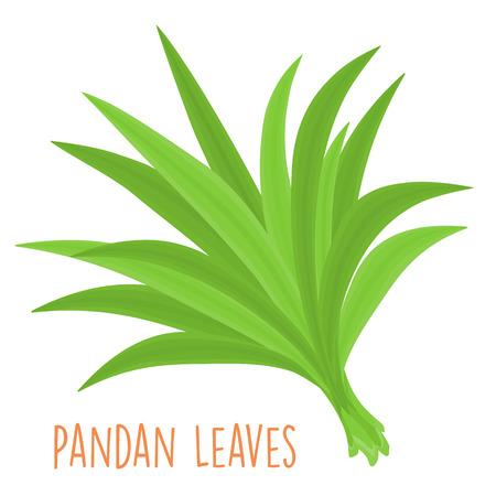 fresh green aromatic pandanus leaf vector illustration
