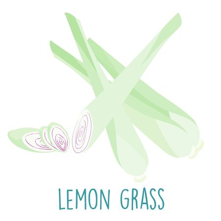 lemon grass: fresh lemon grass plant and slice vector illustration Illustration