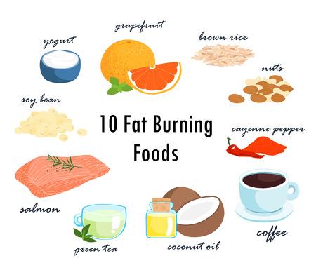 ほとんどの食品が脂肪燃焼のトップ 10 アイテム ベクトル図  イラスト・ベクター素材