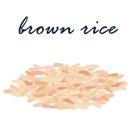 brown rice organic grain vector illustration